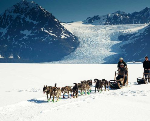 Dog Sled Tour from Knik River Lodge.
