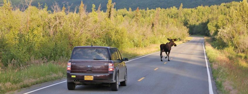 Traffic on the way to Knik River Lodge